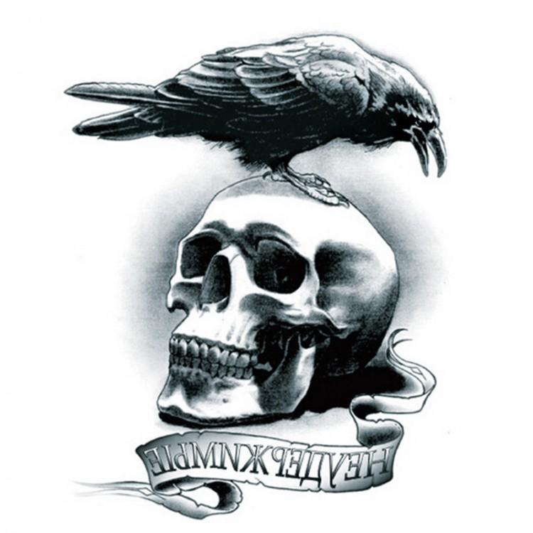 Картинки ворон на черепе