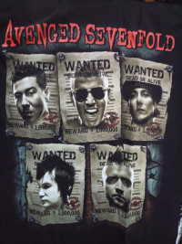 Футболка Avenged Sevenfold. FTH-46